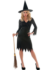 Wicked Witch Costume Adult Classic
