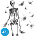 Skeleton Wall Cling Decorations 47ct